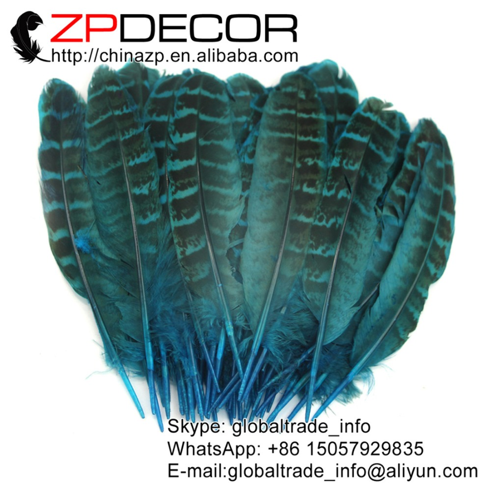 Turquoise ringneck hen feathers