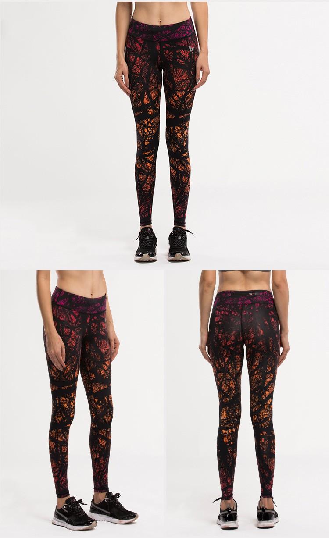 leggings  (1)