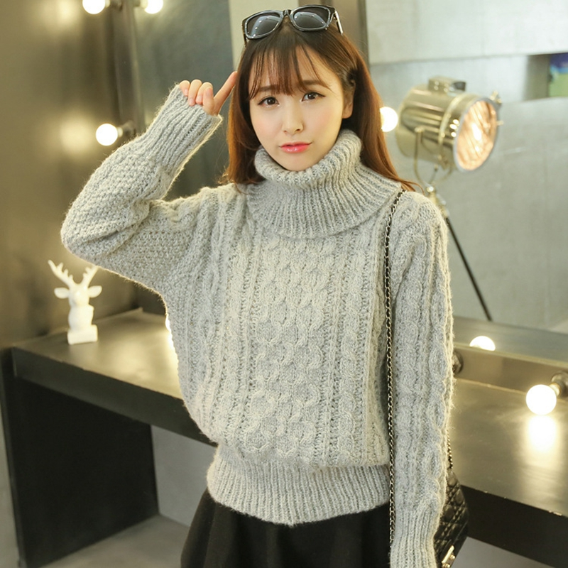 Autumn Winter Women Turtleneck Sweater Wool Loose Pullover Women ...