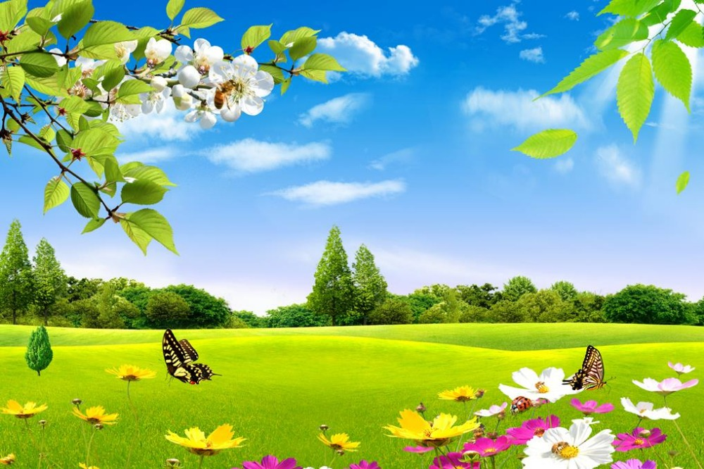 custom 3d photo wallpaper Blue sky white clouds grass flowers natural beauty TV background wall window