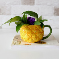 2018 Newest Pineapple Coffee Mugs ceramic cup water bottles Tea Milk Breakfast cups Drinkware Flower Plant 1Pcs Free Shipping