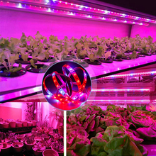Growing Lamps Led Grow Light Strip SMD5050 DC12V Full Spectrum Led Strip Light Led Plant Grow Lights Led Strip Phyto Lamp