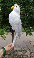 simulation parrot large 43x20cm model toy polyethylene & feathers white parrot model,handicraft ,decoration gift t399