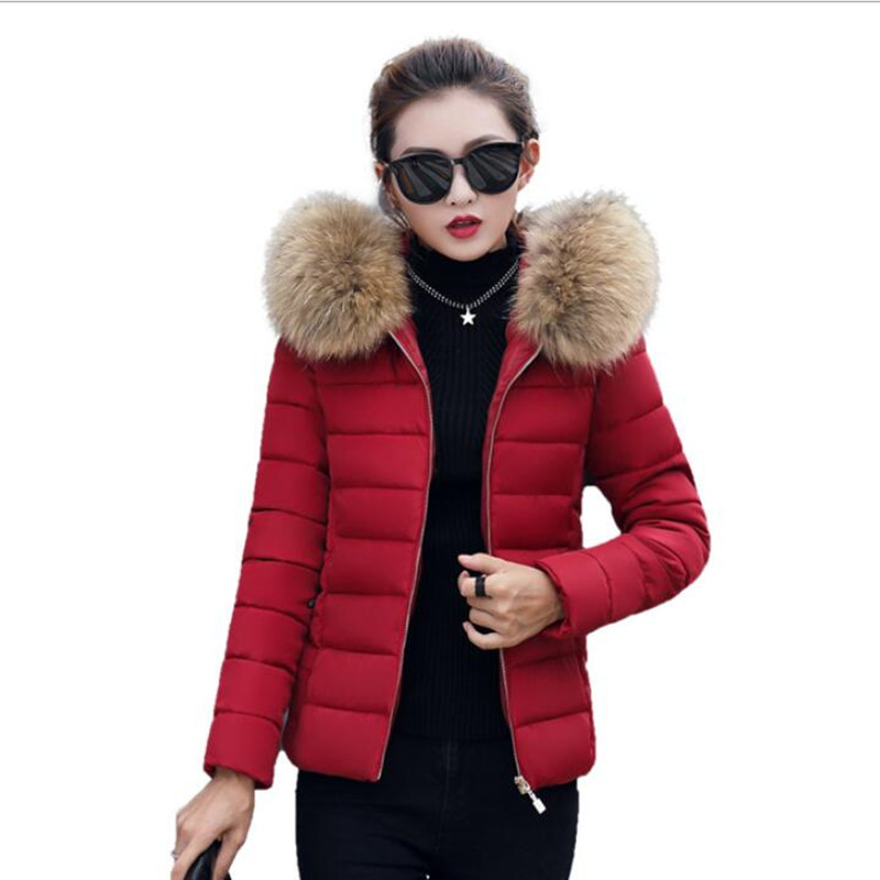 2019 Fashion Winter Jacket Women Down Jackets and Coats Fur Hat Female Warm Down Parka Windproof
