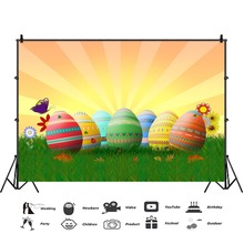 Laeacco Easter Eggs Grassland Baby Personalized Birthday Party Photography Backdrops Photographic Backgrounds For Photo Studio