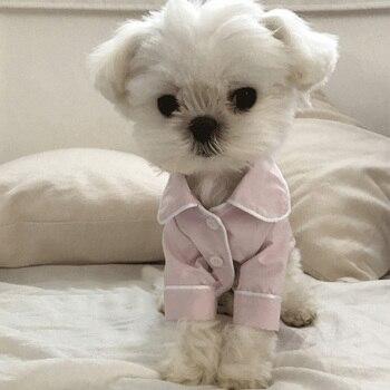 Cute Dog Pajamas 2