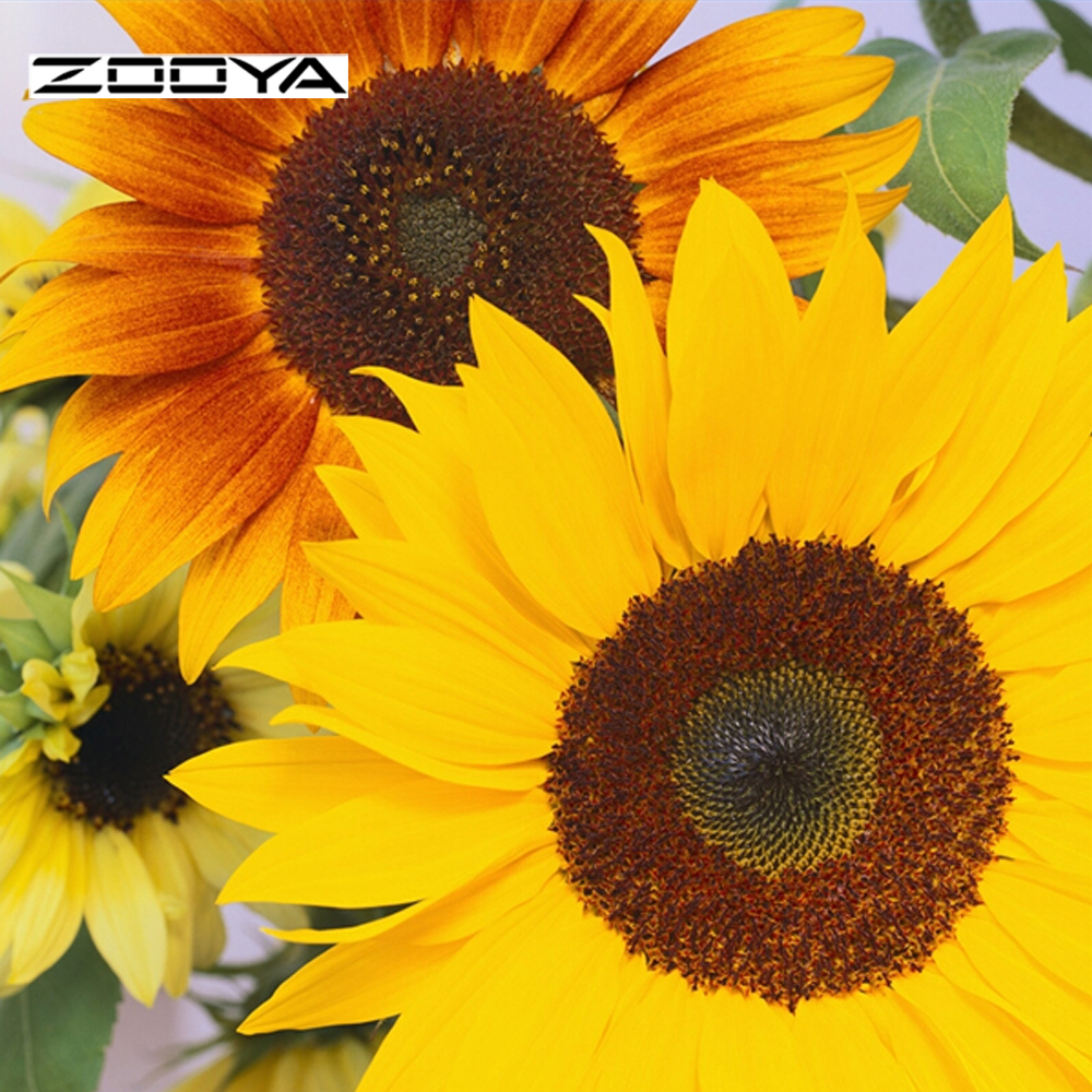Zooya جديد diy الماس اللوحة التطريز مربع - الفنون والحرف والخياطة
