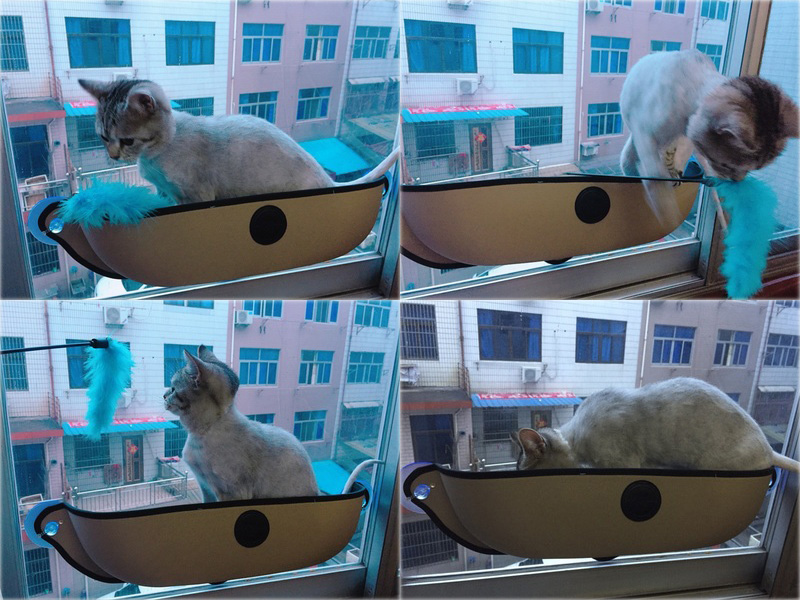 Cat Window Hammock: Home & Car Suitable