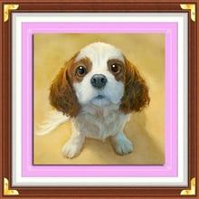 Aml Home 5D Diy Diamond Painting Cross Stitch Pet Puppy Crystal Needle Diamond Embroidery Round Diamond Decoration dog