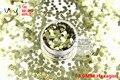 TCB470 Forma Hexagonal patrón de colores lentejuelas brillo de uñas para uñas de Arte y otra decoración de DIY