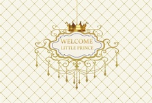 Laeacco Crown Little Princess Girl Birthday Party Photography Backgrounds Personalized Custom Photographic Backdrops For Photo