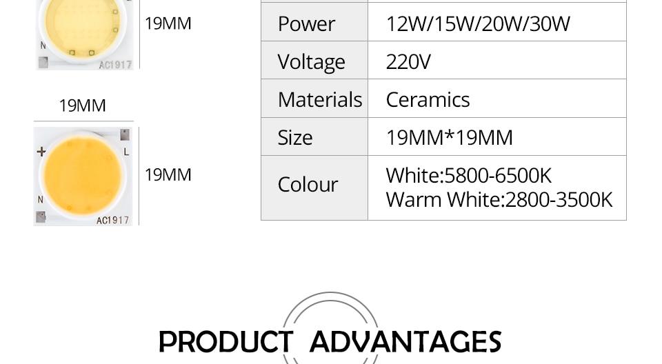 COB LED Chip lamp Matrix (5)