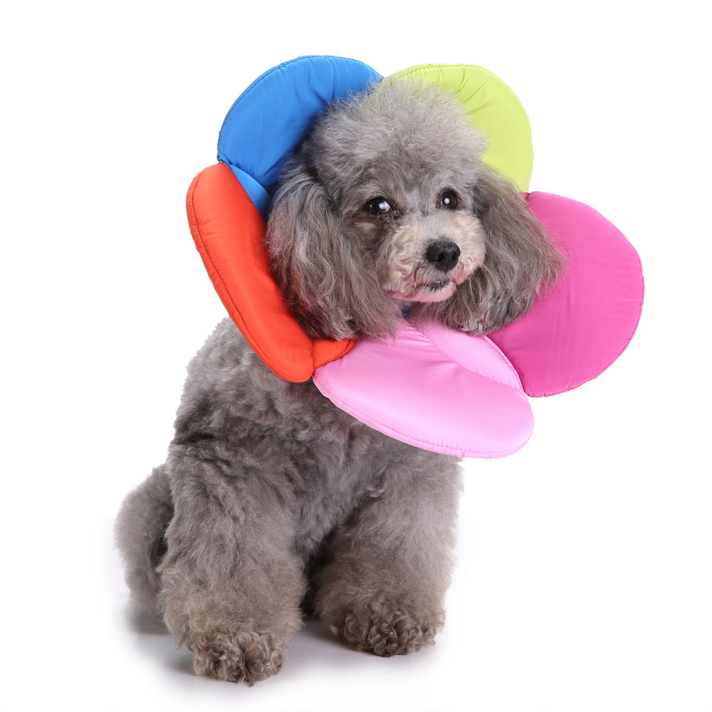 2018 top fashion Pet Elizabethan Collar Dog Cat Adjustable Wound Healing E-Collar Soft C ...