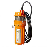 Hot Sale Stainless Strainer Submersible 12V DC Solar Well Pump Water Pump