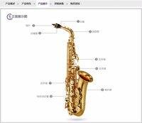 Alto Saxophone High Quality SAX E Flat Alto Saxophone Music Professional Grade Saxophone DHL UPS Shipping