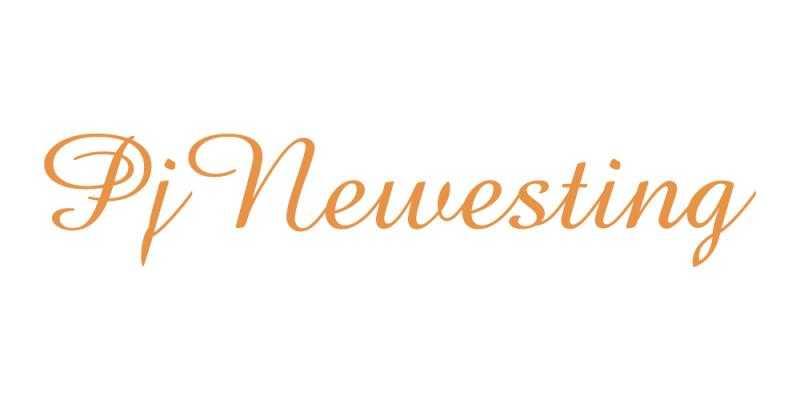 Лого бренда PjNewesting из Китая