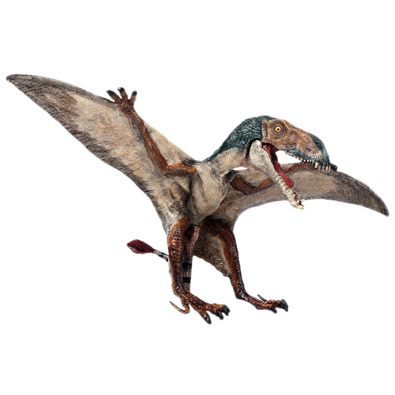 Simulation Dinosaur World Pterosaur Model New Spread Wings Dragon Wings Dragon Children Solid Plastic Toys Realistic Prehistor