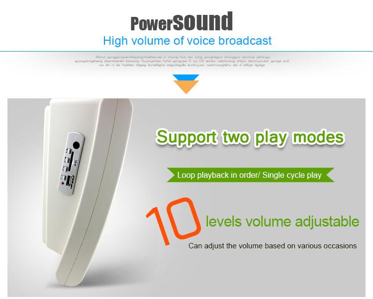 motion sensor speaker (1)
