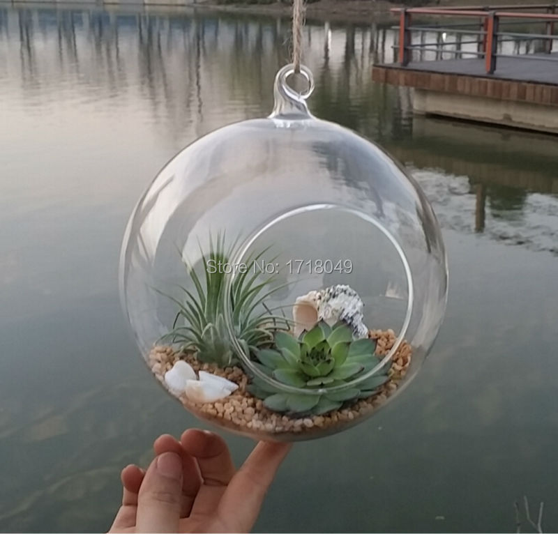 6pcs Set Glass Orb Planter Vases Hanging Globe Terrarium Kit For