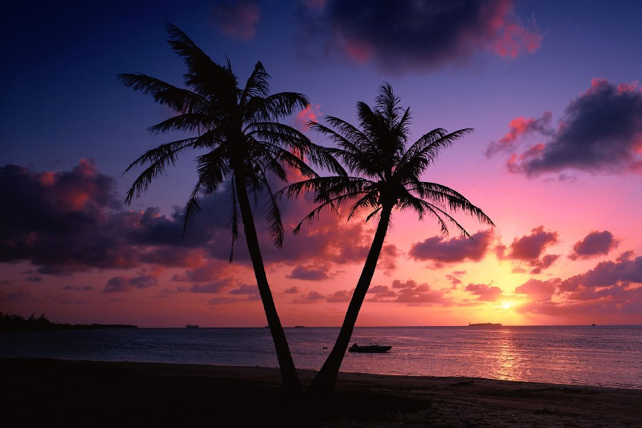 Online Shop DIY Frame Tropical Beach Trees Sunset City Landscape Scenery Poster Fabric Silk Posters And Prints For Home Decor 087