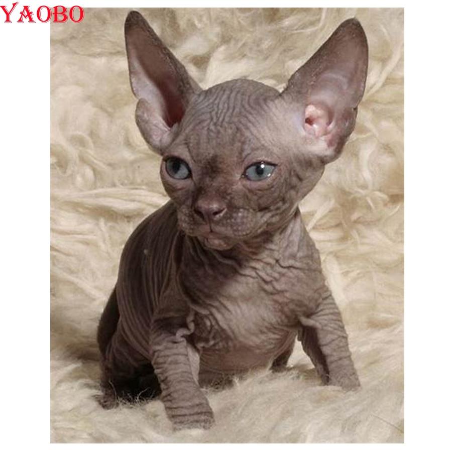 New Diamond Embroidery Full Display Diy Diamond Painting Sphynx Cats Animal 5D Full Square Rhinestones Decor Home Beadwork