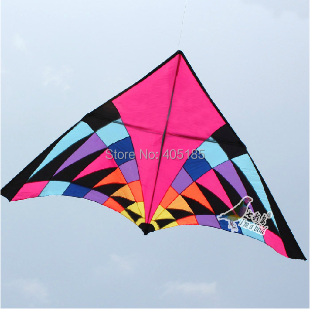 Free Shipping Outdoor Fun Sports 5m Power Triangle Kite Flying Multicolor Factory Direct