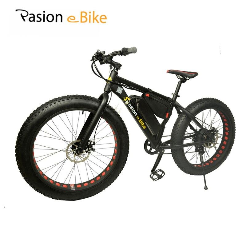 buy pasion e bike 36v 500w powerful. Black Bedroom Furniture Sets. Home Design Ideas