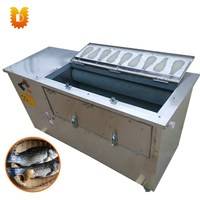 Big Capcity Automatic Fish Scale Removing Machine/Fish Scaling Machine