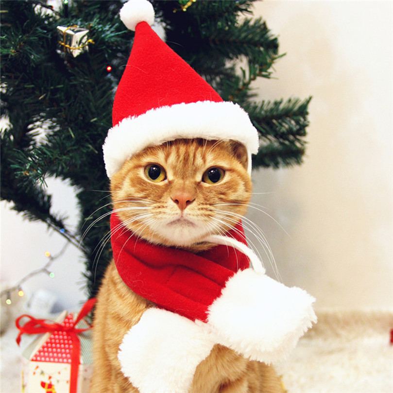 New Pets Christmas Day Ornaments Cute Dogs Hat Scarf Red Acrylic Fibres Christmas Hat Scarf Santa Suit Cat Pet Accessories @40