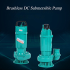 Brushless dc submersible pump ZQB 48V 60V submersible pump DCBL PUMP for well bldc pump for irrigation