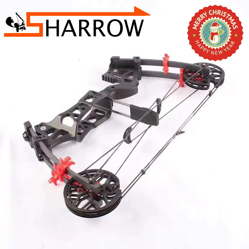 1set 30-60lbs New Design Archery Compound Bow Steel Ball Bow Dual-use M109E Right Hand /Left Hand Hunting Accessory