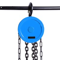 Cable Hand Control Pulley 500kg Pulley Chain Block Chain Hoist Polipasto Crane 2.5m Manual Block Lift Pulley Lifting
