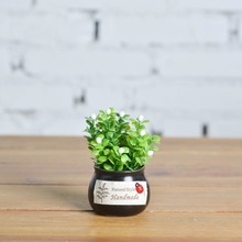 New Style Black Mini Ceramic round Cylinder Simulation Pot Plant Artificial Flowers Car Indoor Creative Ornaments