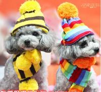 애완 동물 개 무지개 모자 세 조각 캡 애완 동물 개 액세서리 테디 개 모자 일치하는 발목 스카