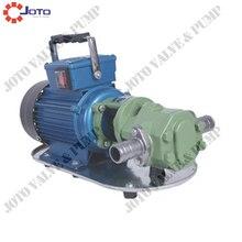 高効率ギアミニオイルポンプ鋳鉄750ワット220ボルト/50 hz