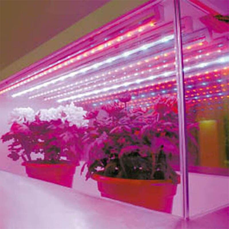 (1m crvena i 1m plava) LED svjetla za uzgoj traka 28,8 W / Lot 220V - Profesionalna rasvjeta - Foto 3