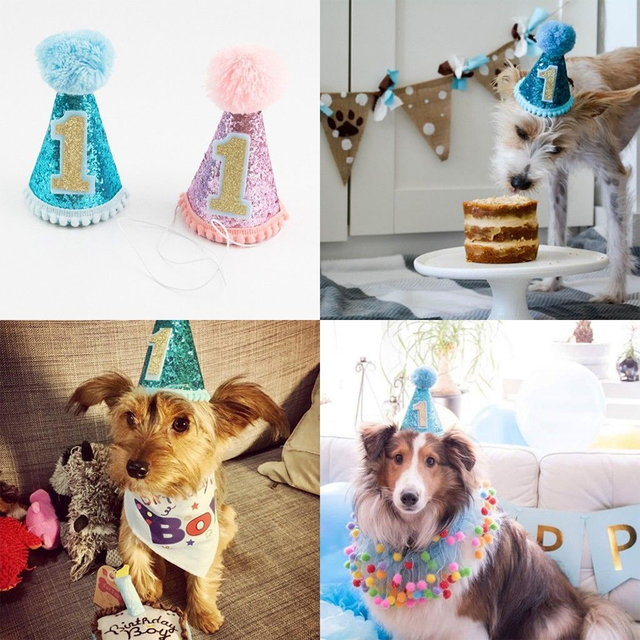1 Year Old Birthday Hat For Dog Cat Pet Party Cap Costume Head Wear Blue Pink Optional