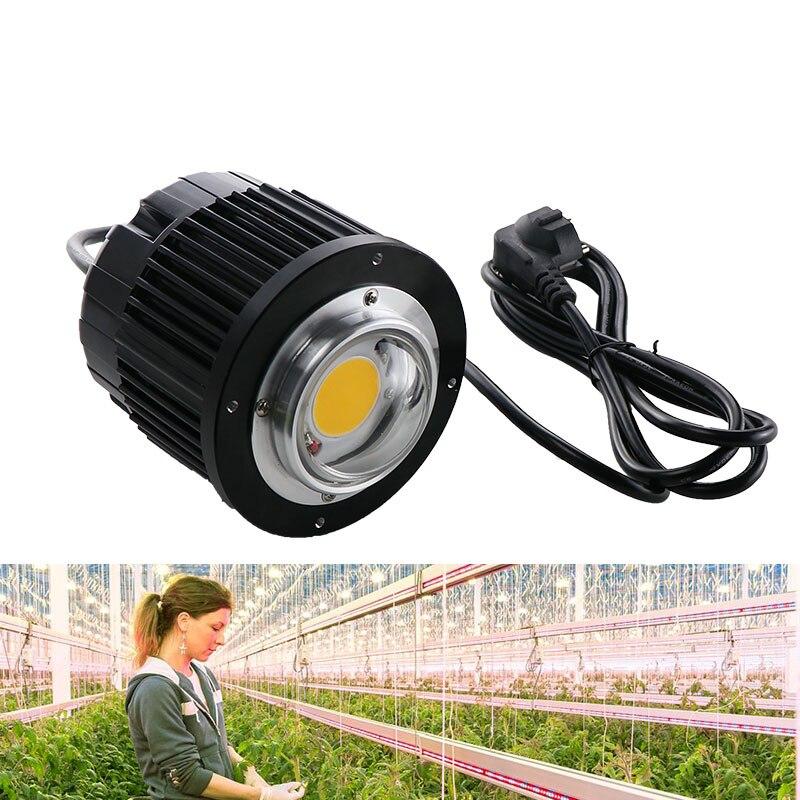 100 w LED Élèvent La Lumière CREE COB CXB3590 3000 k 3500 k 5000 k 12000LM D'origine Puce Haute Puissance Lumens pour DIY Usine Lampe Croissante