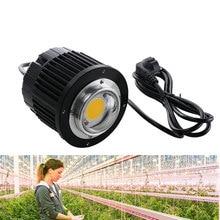 100W LED Grow Light CREE COB CXB3590 3000K 3500K 5000K 12000LM Original Chip High Power Lumens for DIY Plant Growing Lamp