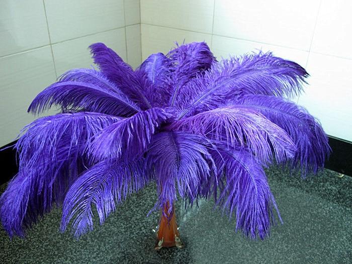 Wholesale natural Hard rod 100pcs/lot purple Ostrich Feathers 25 30cm / 10 12 Wedding Birthday Christmas Decorations