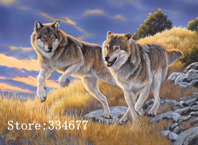 >Cross Stitch Kits Crafts 14CT Unprinted Animal wolf on the <font><b>Prairie</b></font> Embroidered Set Handmade Art DMC Oil Painting Wall <font><b>Home</b></font> Decor