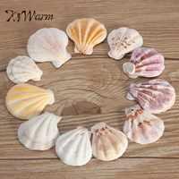 KiWarm Heißer Verkauf 10 teile/satz Mediterranen Stil DIY Strand Muscheln Mix Sea Natürliche Shells Shell Handwerk Aquarium Aquarium Dekor