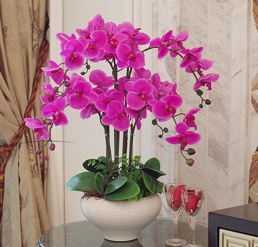 Orchid Phalaenopsis Real Touch Flower With Leaves Artificial Orchids Arrangement Diy Arrange