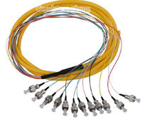 12 Core Stand FC 1.5M Single Mode SM Pigtail Fiber Optic Pigtai FC Loose Cable