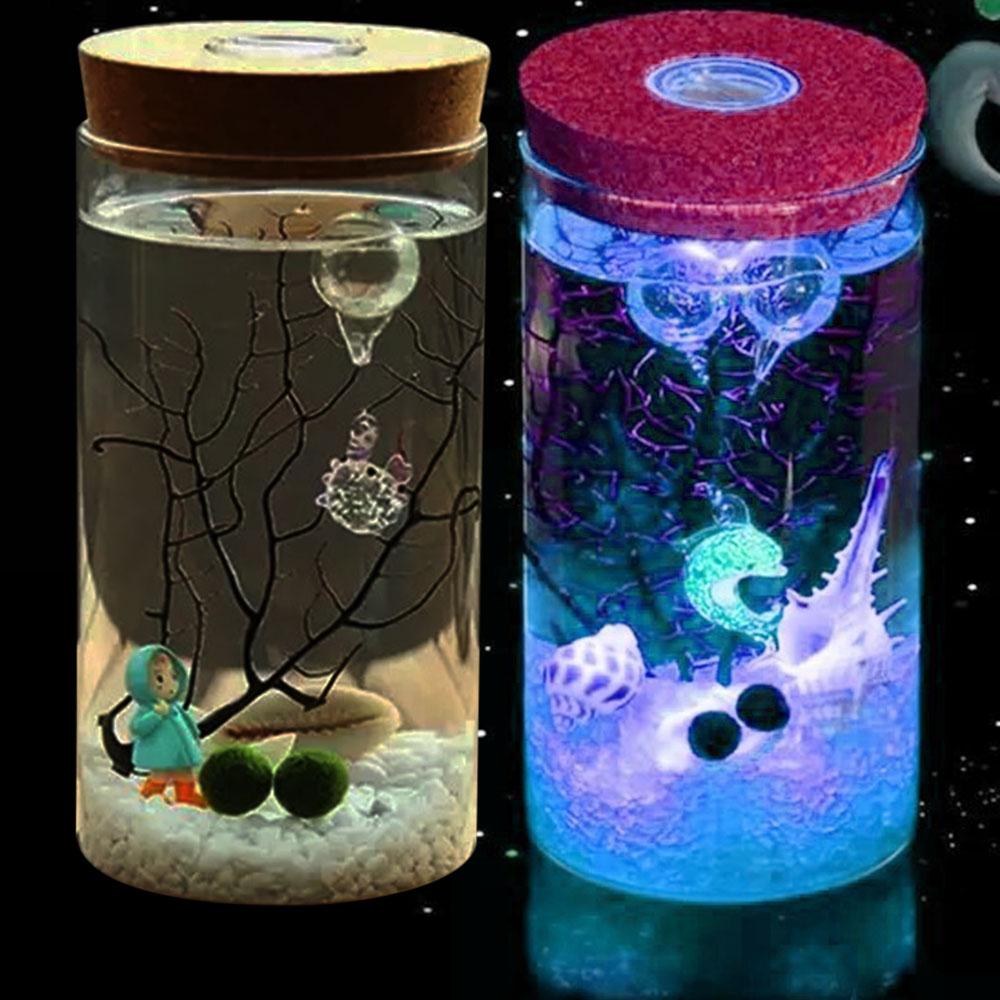 12 X 8CM LED Luminous Ecology Glass Bottle Night Light Storage Box New