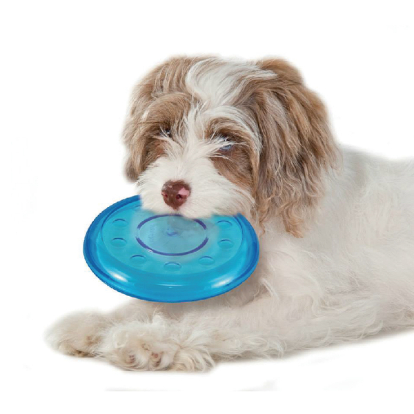 free shipping petstages non toxic rubber orka mini flyer dog toys