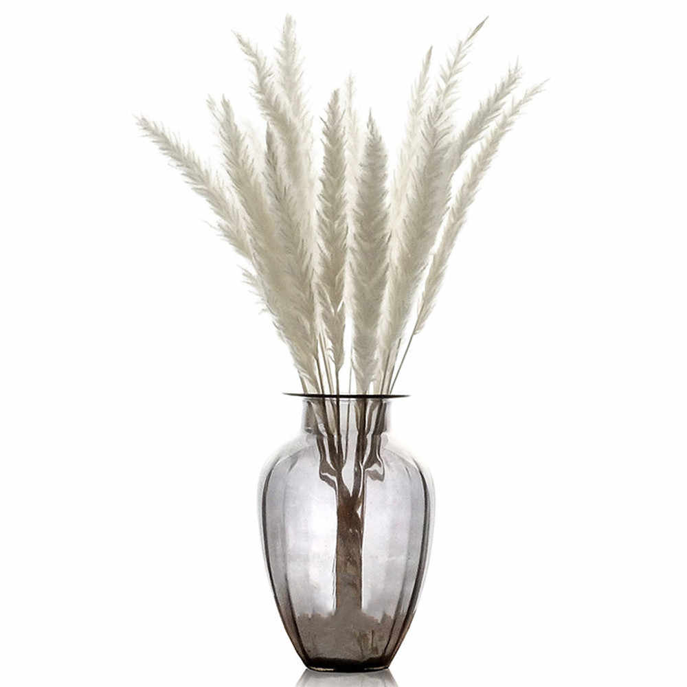 15pcs Wedding Decorative Bouquet Natural Dried Small Pampas Grass Phragmites Communis Foxtail Grass Bouquet Vase Not Included