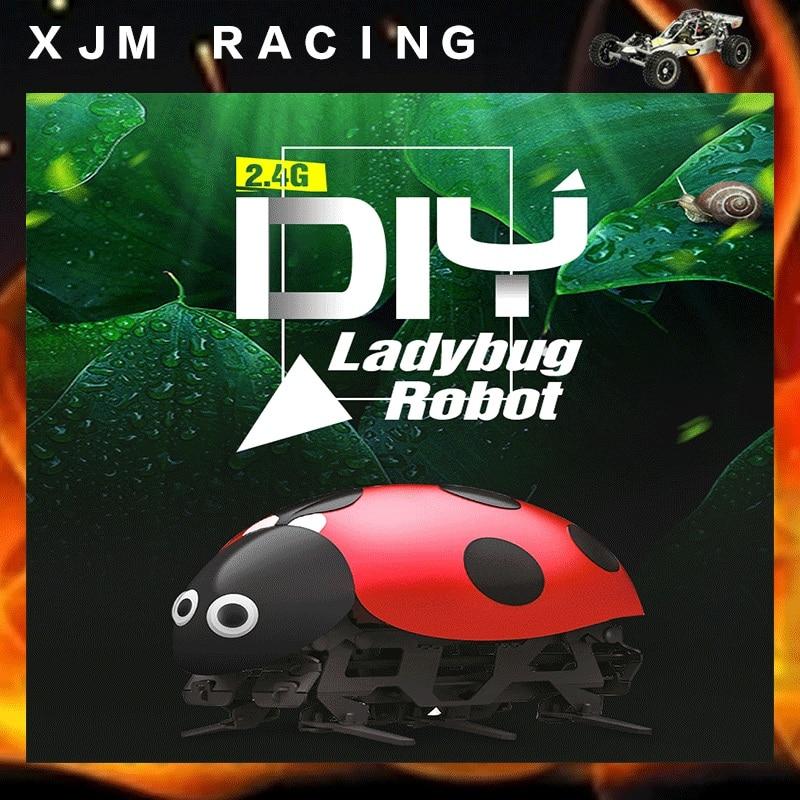2.4G DIY ladybug Robot RC beetle toy grouchy ladybug pb illustr