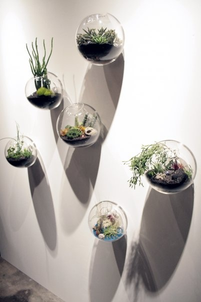 6pcs Set Wall Hanging Glass Fishbowl Wall Bubble Terrarium