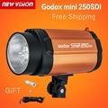 GODOX Smart 250SDI Strobe Photo Flash Studio Light 250w Pro Photography Studio Lamp head 220V 110V Free shipping